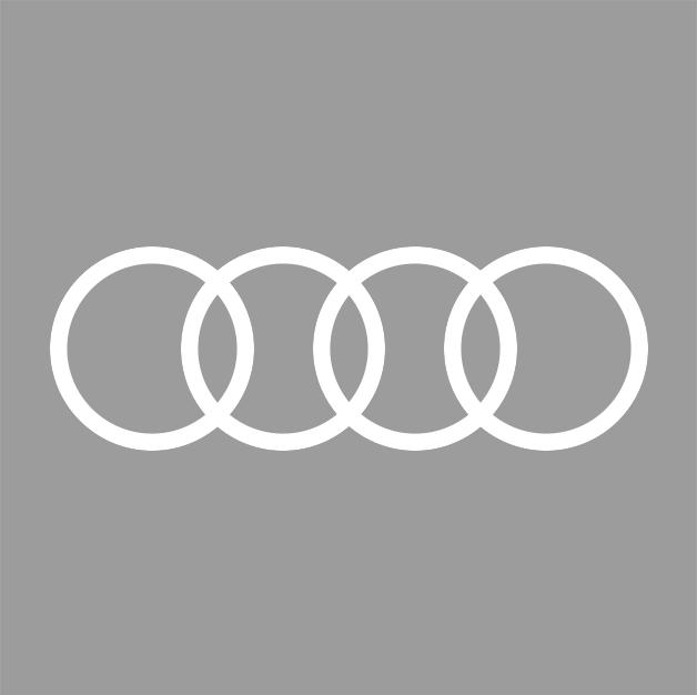 bhs-automarken-audi-grau
