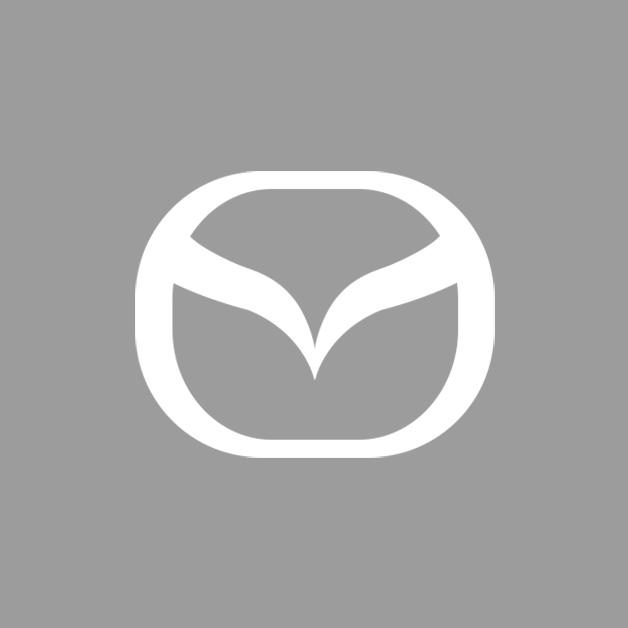bhs-automarken-mazda-grau